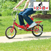 Electric Folding Bike II
