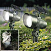 2 Pack Solar Accent Lights