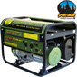 Buffalo Tools 4000 Watt LP Generator