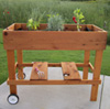Patio Garden Box