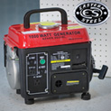 1000W Factory Gas Generator