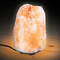 Handcarved Salt Lamp