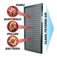 Web Plus Furnace Filter