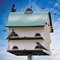 Purple Martin Barn