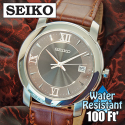 Seiko Watch  Model# SGEE99