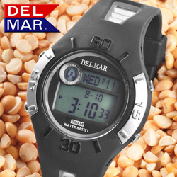 Del Mar Multi-function Watch  Model# 50474