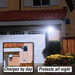 60 LED Solar Security Light  Model# 22050