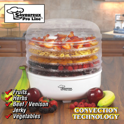 Food Dehydrator&nbsp;&nbsp;Model#&nbsp;BY1101