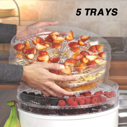 Food Dehydrator  Model# BY1101