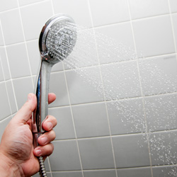 2-In-1 Showerhead  Model# 5818