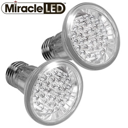 2 Pack 4 Watt LED Outdoor Light Bulb  Model# 605027