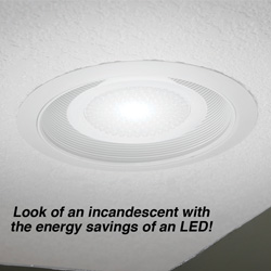 Miracle LED Recessed Bulb  Model# 603001