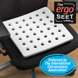 ErgoSeet Cushion  Model# 00200BOX