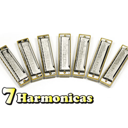 7 Piece LoDuca Chicago Blues Harmonica Kit  Model# 13148476644