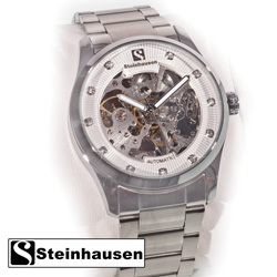 Steinhausen Silver Watch  Model# TW8372S