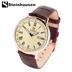 Steinhausen Dunn Legacy Watch  Model# SW493GCA