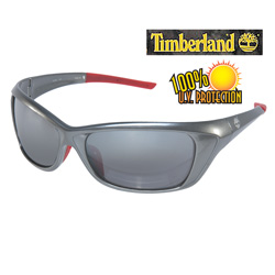 Gray Timberland Wrap Sunglasses  Model# TB7054-010A