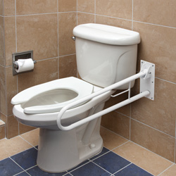 Foldaway Grab Bar&nbsp;&nbsp;Model#&nbsp;522-3700-1700