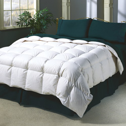 Twin Down Comforter&nbsp;&nbsp;Model#&nbsp;1101