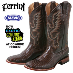 Ferrini Teju Lizard Boot - Chocolate  Model# 11193-09