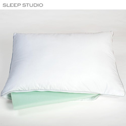 Dual Comfort ViscoFresh Latex/Down Alternative Pillow&nbsp;&nbsp;Model#&nbsp;2402428