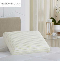 ViscoFresh Traditional Pillow  Model# 3101426