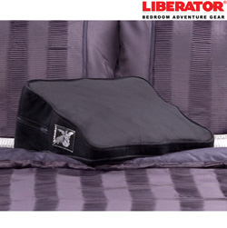 Liberator D�cor Wedge  Model# 14153545