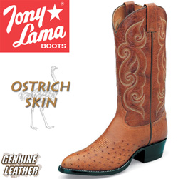 Tony Lama Peanut Brittle Smooth Ostrich Boots  Model# CZ872