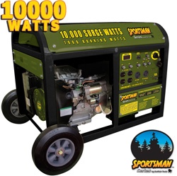 Buffalo Tools 10,000 Watt Gas Generator  Model# H07238L