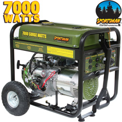 Buffalo Tools 7000 Watt Gas Generator  Model# H07136L
