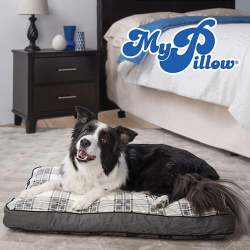 MyPillow Pet Bed