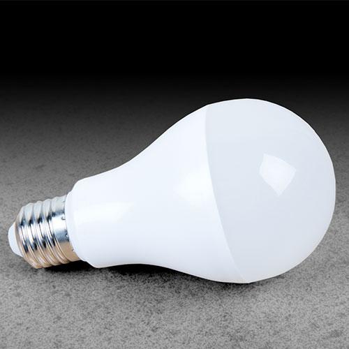 LED Cool Daylight Bulbs