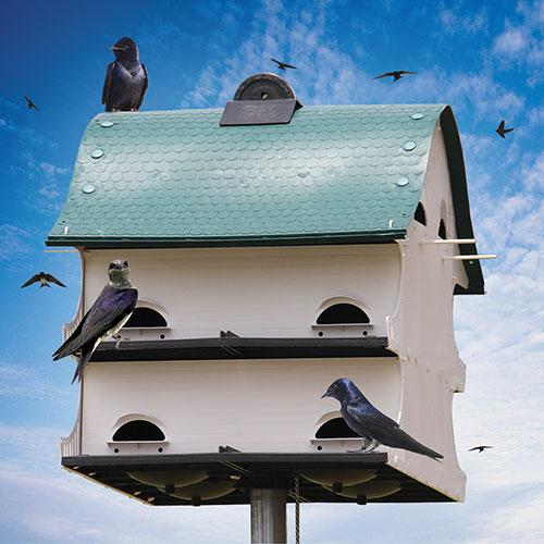 'Purple Martin Barn'