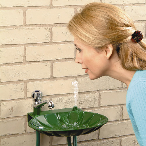 backyard faucet and drinking fountain model 19293