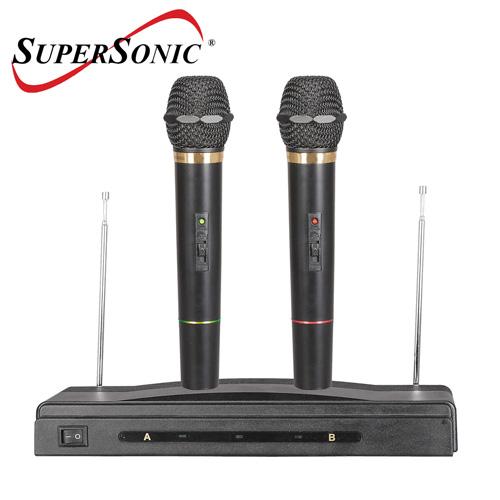 Professional Dual Wireless Mics