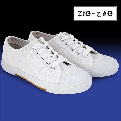 'Canvas Shoes'
