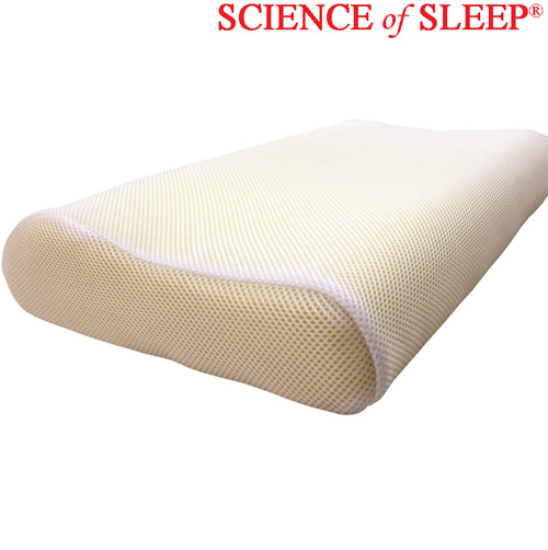 'Cool Mesh Memory Foam Pillow'