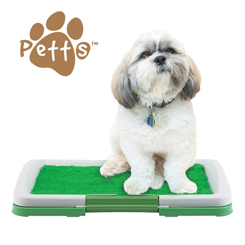 'Pet Trainer Mat'